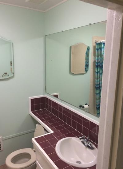 Pied Guest Bath_1
